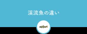 渓流魚の違い
